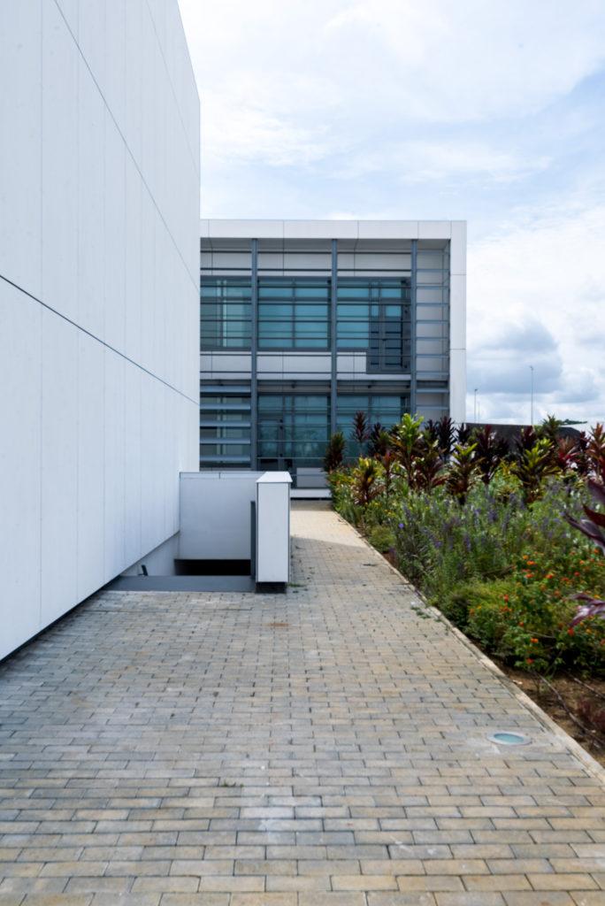 armandocunha_university-532-684x1024 University of Mongomo, Equatorial Guinea
